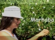 marhaba_741