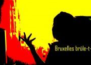 bruxelles_2856 copie